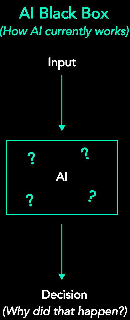 AI Black Box